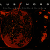 Lustmord - The Place Where the Black Stars Hang